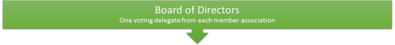 CRCEA Structure - Board of Directors